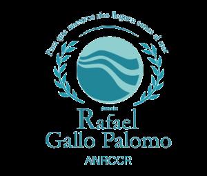 Logo Rafael Gallo Palomo Award